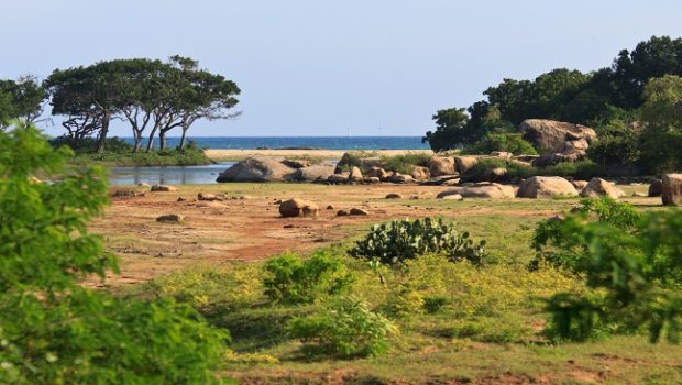 Le parc national de Yala